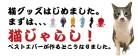 nekojarashi_slideshow